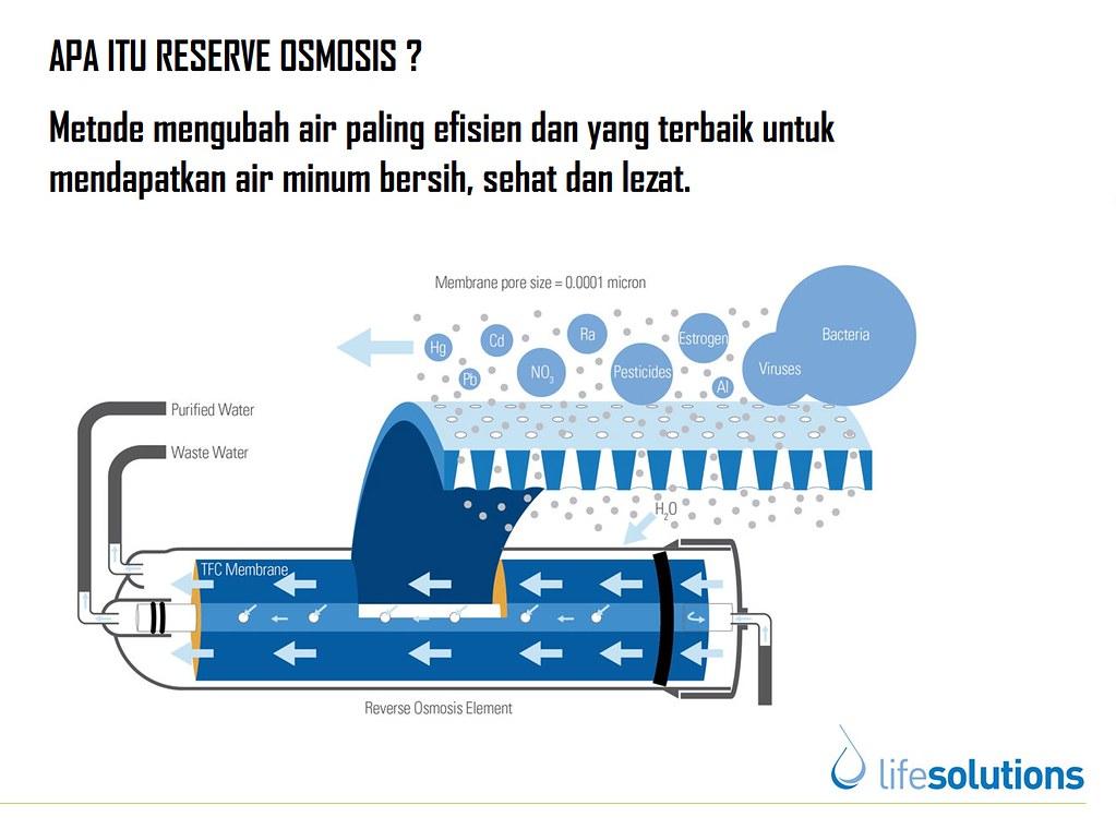 Manfaat Air RO Dalam Jelly Gamat QnC