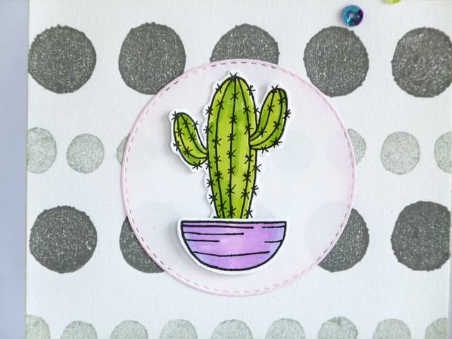 Cactus 1/3