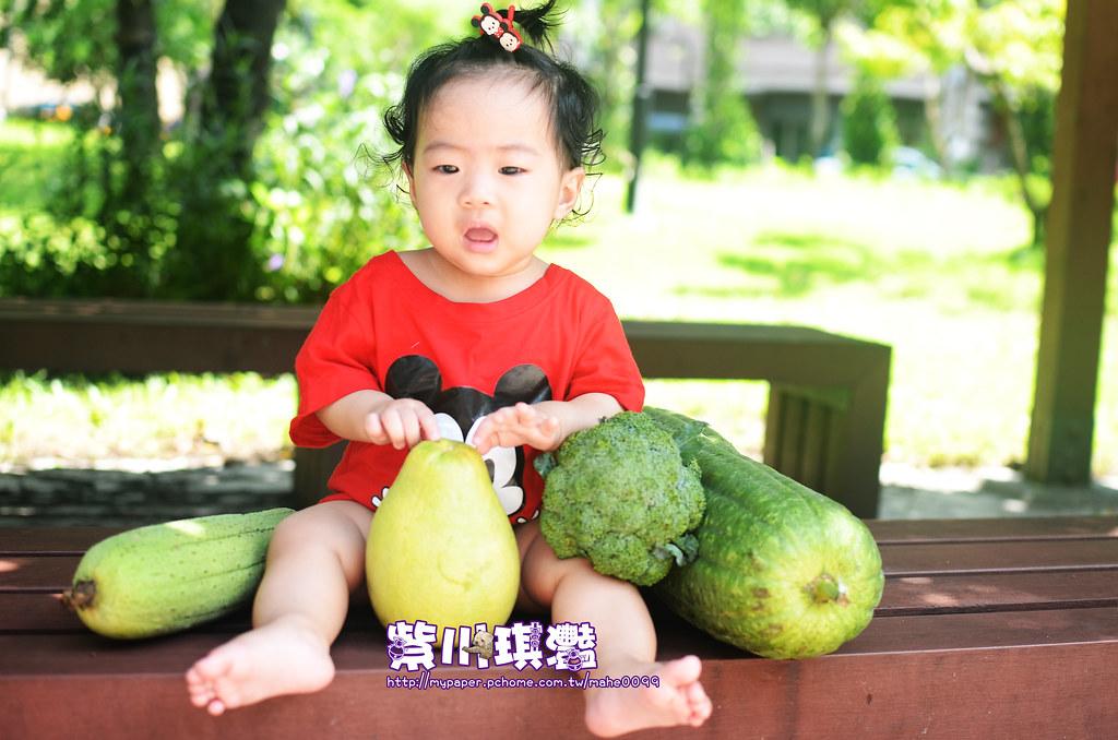 台灣必吃水果-018