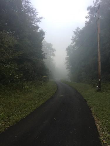 Road in Mist