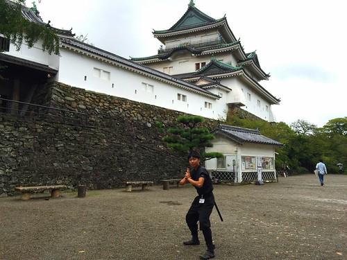 和歌山城と忍者