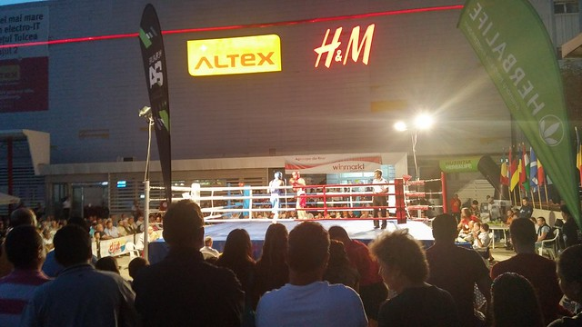 Boxeoa Tulcean
