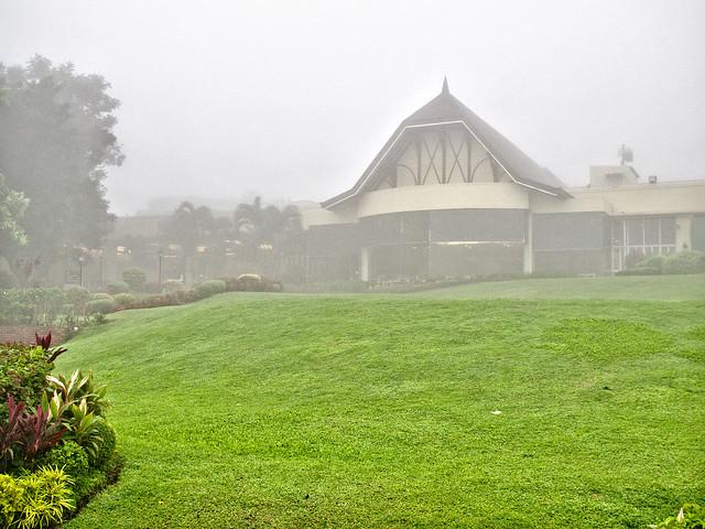Foggy Lawn