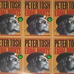 "Peter Tosh Equal Rights Virgin England 12"" Lp Vinyl Album"