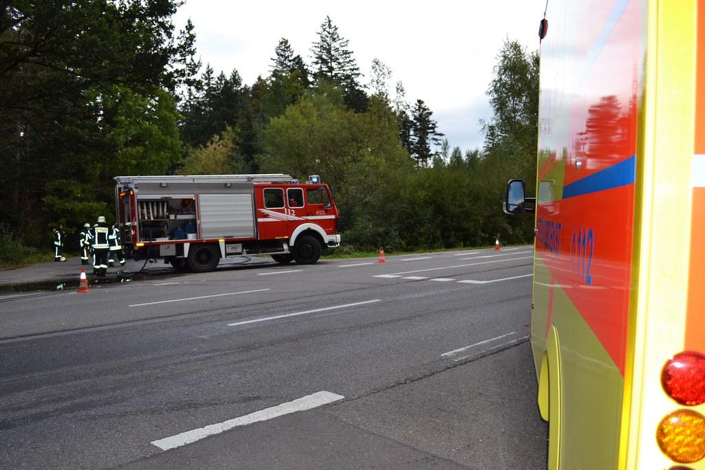 Hermannsee: PKW-Brand fordert eine verletzte Person - 01.10.2016