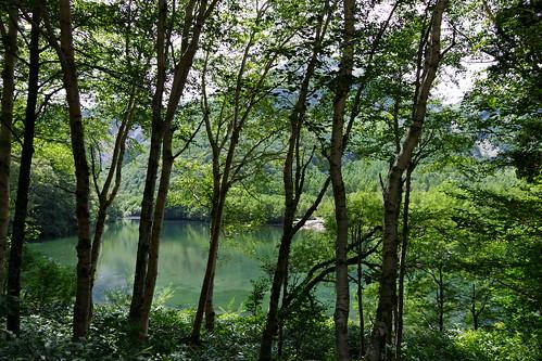 Taisho-ike pond Kamikochi 2016 summer 01