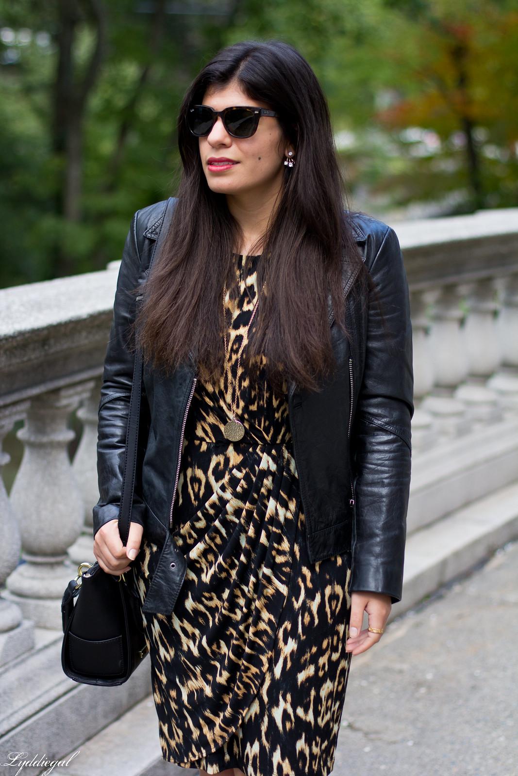 leopard dress, leather moto jacket, strappy heels-4.jpg