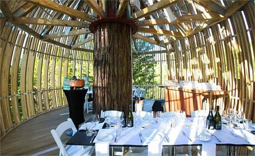 Secoyas Treehouse