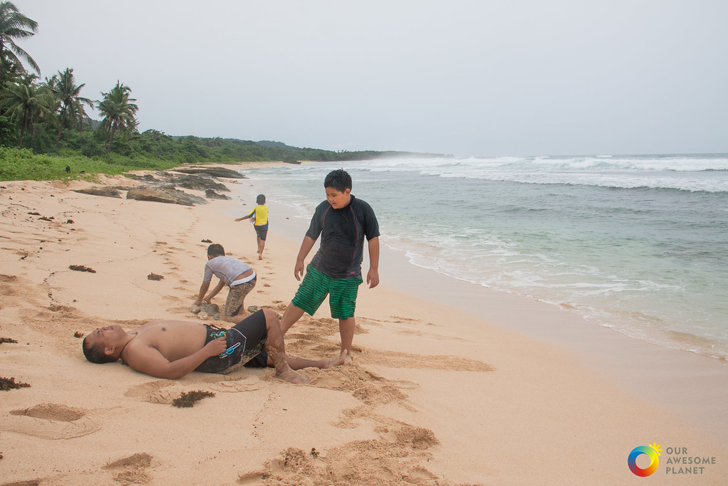Beach day essay