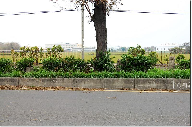 竹子腳內務局11 號三角點、總督府土木局水準點、總督府堤敷界
