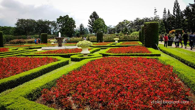 French Garden1-123427rw