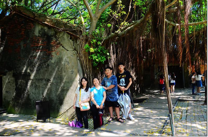 台南安平樹屋 (1)
