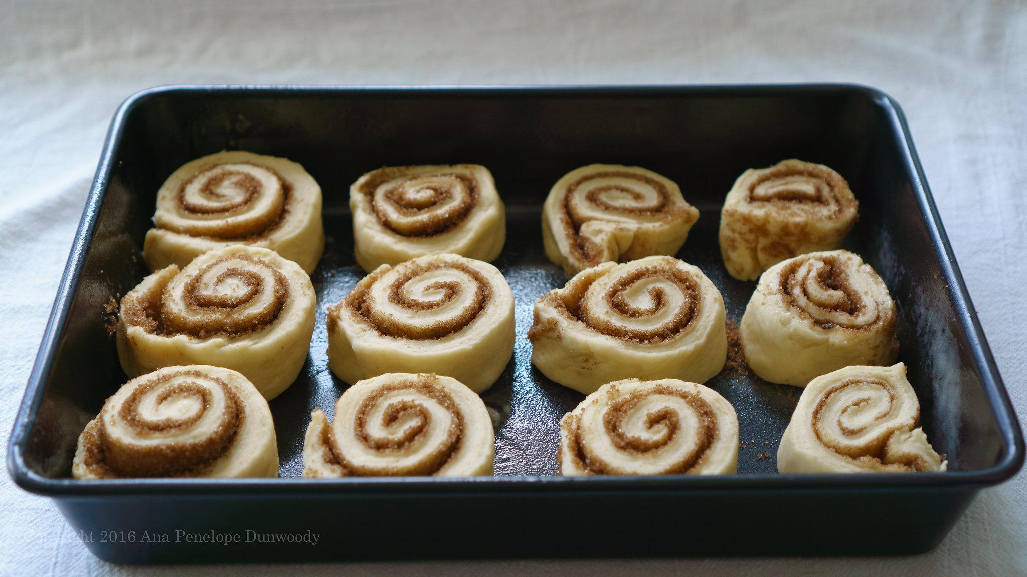 Preproofed Cinnamon Rolls