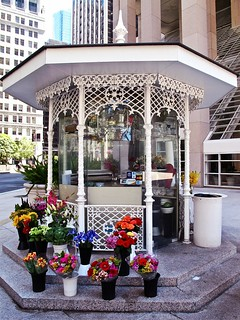 financial district flower stand | by Demetrios Lyras