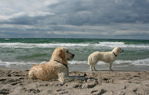 Beach babes (Sallie and Ditte) | by Ingrid0804