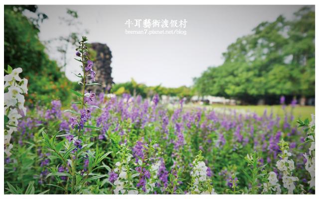 牛耳藝術渡假村-14