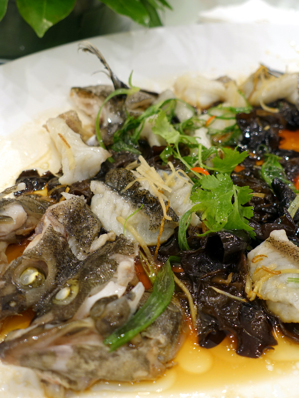 XIU Fine Cantonese Dining Restaurant- Steaned Lapu Lapu