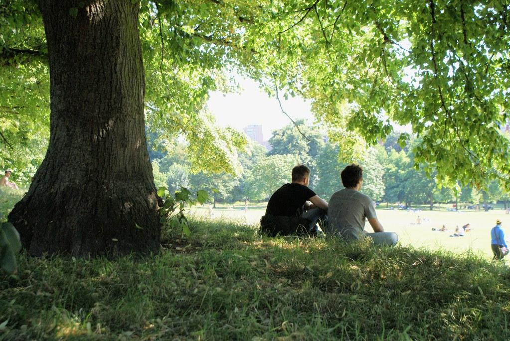 Sous les tilleuls du Kensington gardens à Londres.