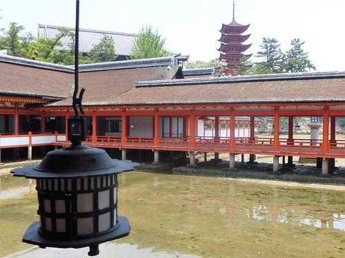 jp16-Myajima-Itsukushima-avant-midi (5)