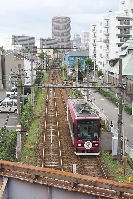 Tokyo Train Story 都電荒川線 2016年9月8日