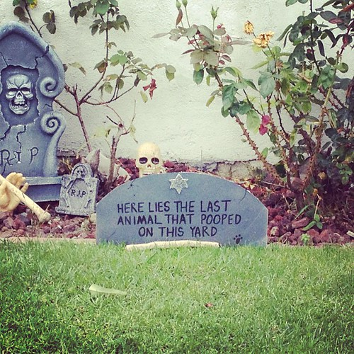 Maybe don't take your pets trick-or-treating at this house. | by A Walker in LA