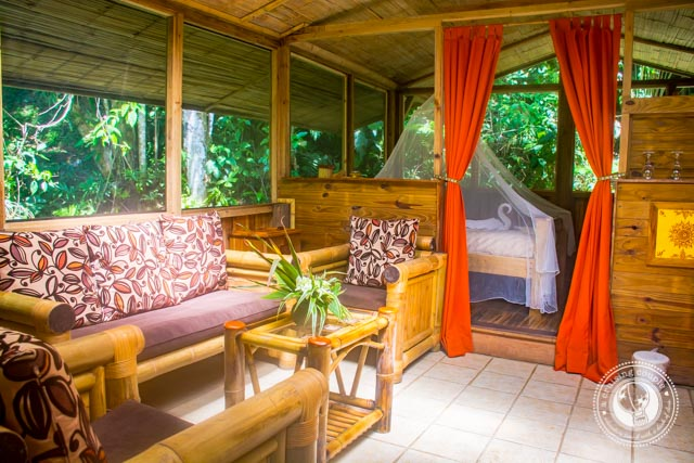 Living in a Treehouse In Costa Rica
