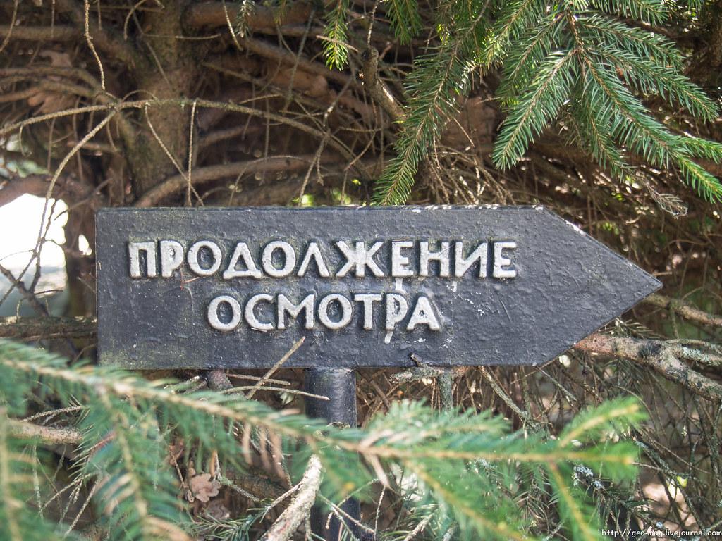 винница_08-15
