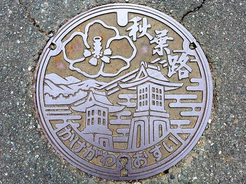 Kakegawa Shizuoka, manhole cover 3 (静岡県掛川市のマンホール3)