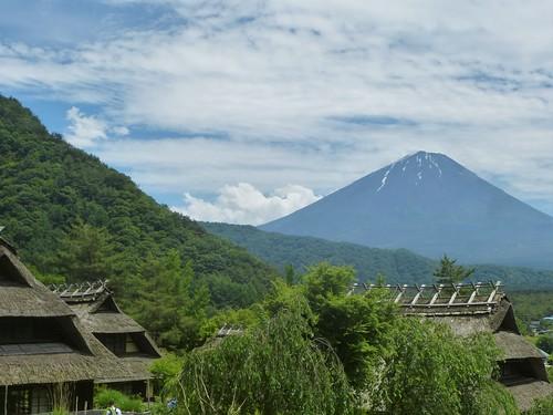 jp16-Fuji-Saiko-Village (9)
