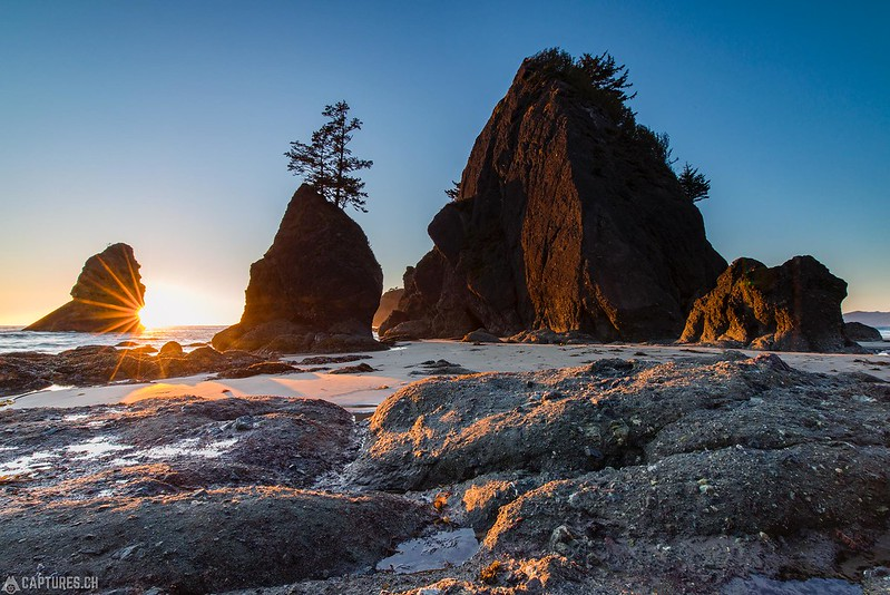 Sun at the Shi Shi beach - Olympic National Park
