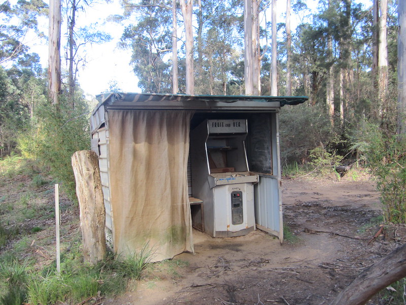 Arcade game found in a forest, near Pemberton, Western Australia