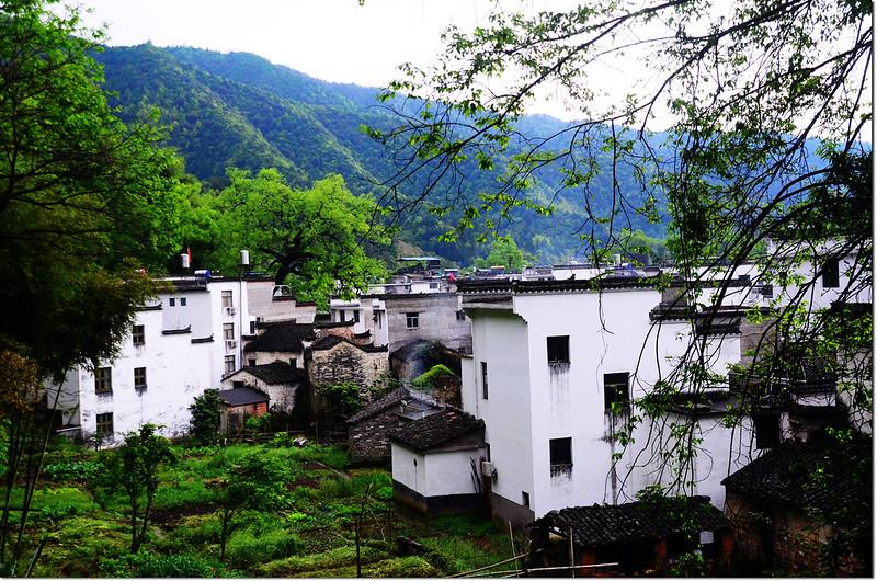 曉起村 4