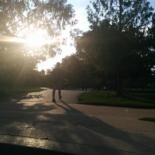 Into the sun #toronto #trinitybellwoods #queenstreetwest #evening