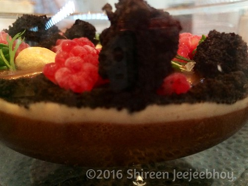Chocolate terrarium at Planta