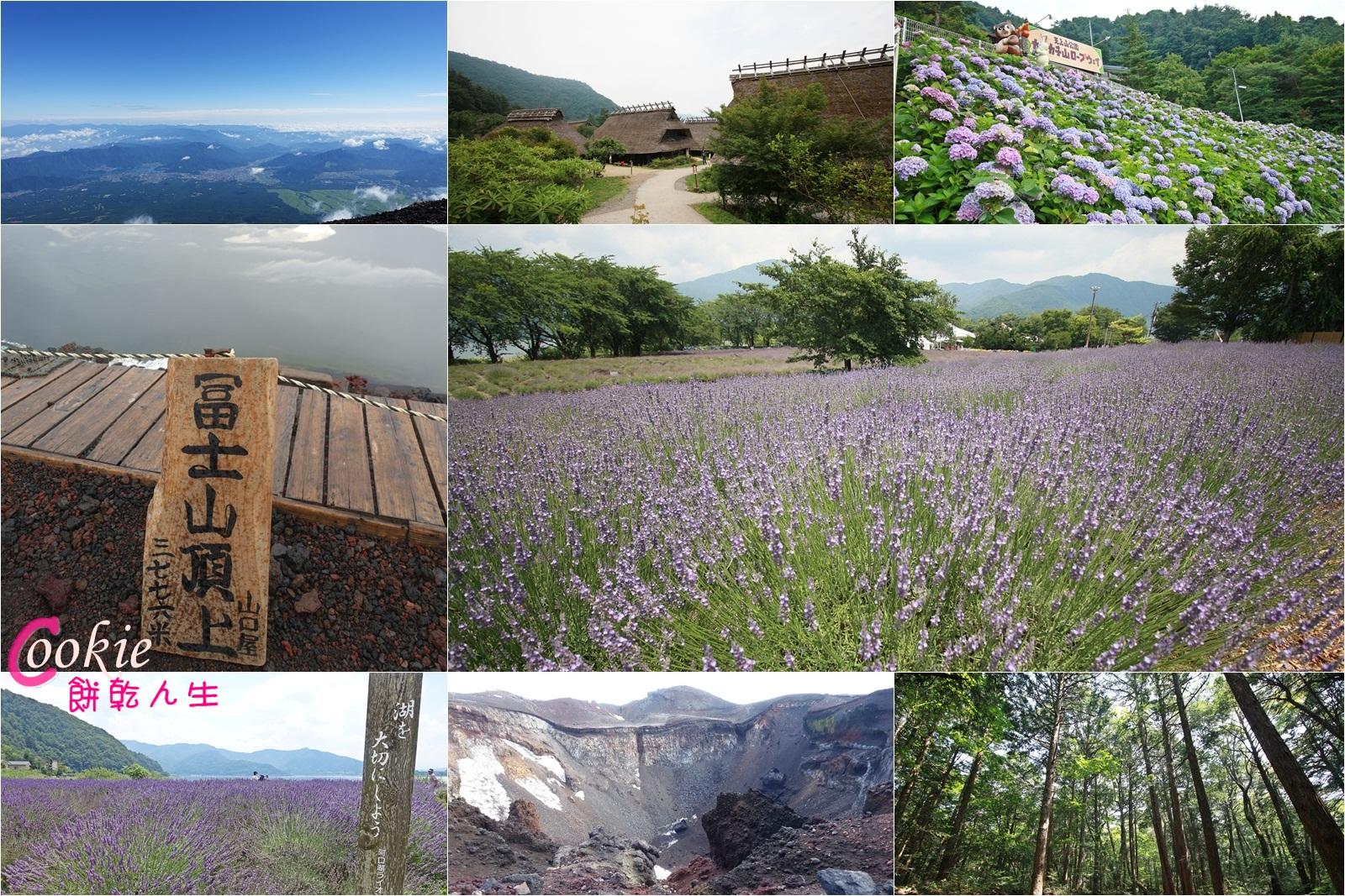 日本登富士山自由行 赏薰衣草,里根场,风穴冰穴,自杀树海