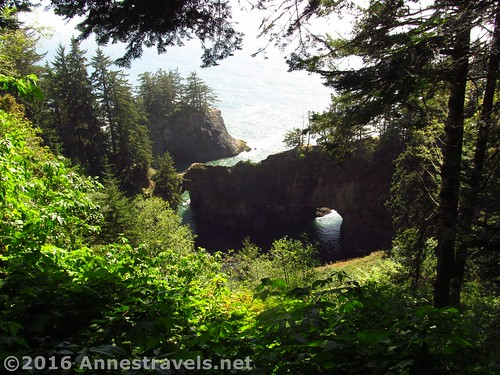 The view from the Natural Bridge Overlook, Samuel H. Boardman Scenic Corridor, Oregon