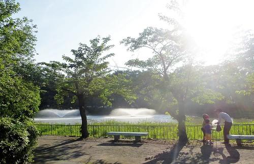 jp16-Nagoya-Château-Parc Meijon (9)