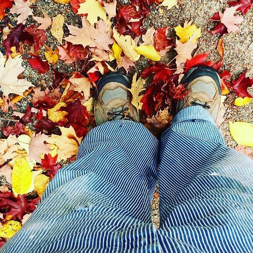 Leaves #ChestnutRidge #OrchardPark #wny #autumn #overalls #vintage #Lee #HickoryStripe