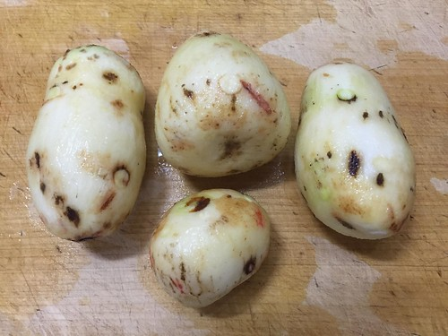 サトイモのそぼろあんカレー