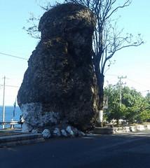 terletak di ujung Pulau Jawa dan sering dijadikan sebagai tempat transit perjalanan menuj Info Wisata : Wisata Di Banyuwangi / Liburan Terbaik Di Banyuwangi