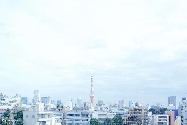 那些RX1走過的冬季 | 07 | 東京,一枝獨秀