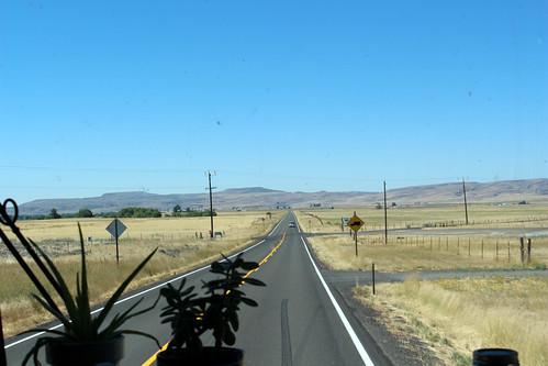Curvy Roads-45