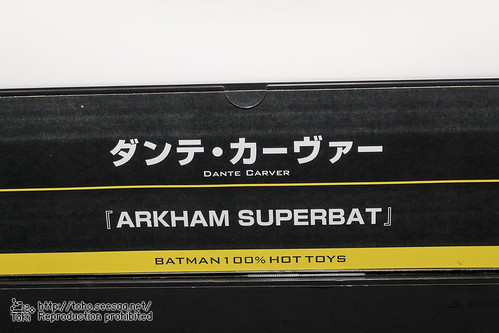 BATMAN100_HotToys_2-693