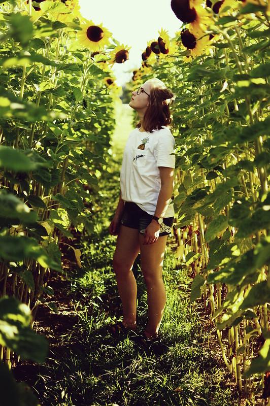 Fotografie Sonnenblumen Mädchen