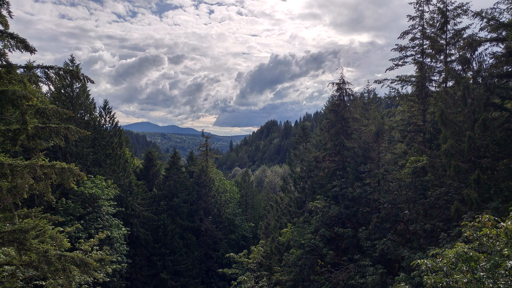 Snoqualmie Valley Gravel Adventure - The Riding Gravel Forum