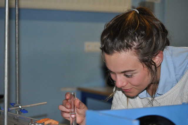 Lady Elizabeth School - Senior Work - Science