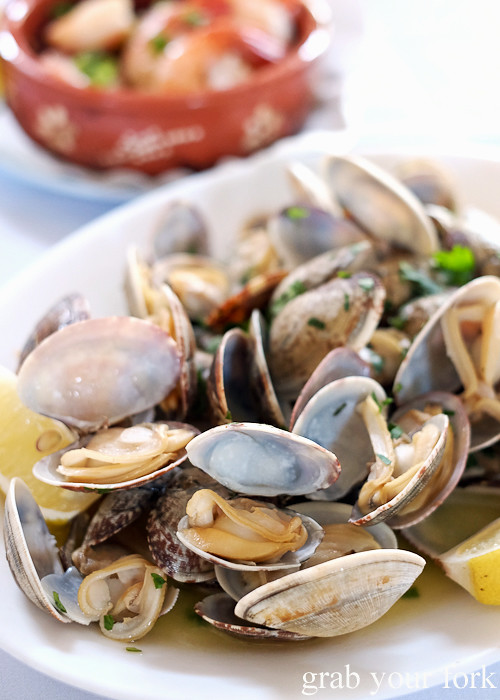 Vongole clams in lemon and mustard sauce at Casa do Benfica, Petersham