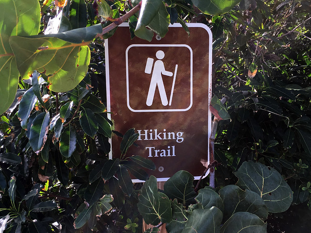 Hiking Trail on Great Stirrup Cay
