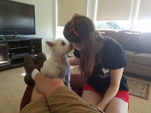 Daisy Westie Kisses