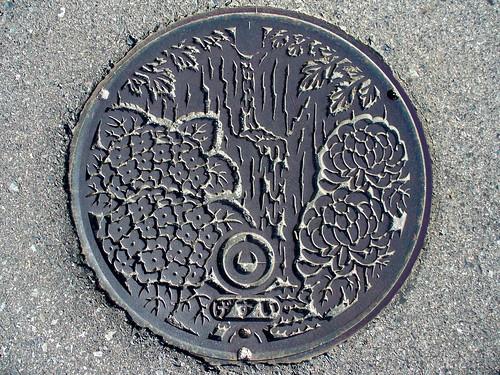 Tohaku Tottori, manhole cover (鳥取県東伯町のマンホール)